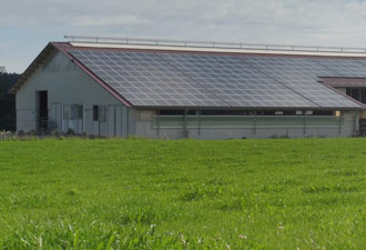 fotovoltaica industrial granja agricola